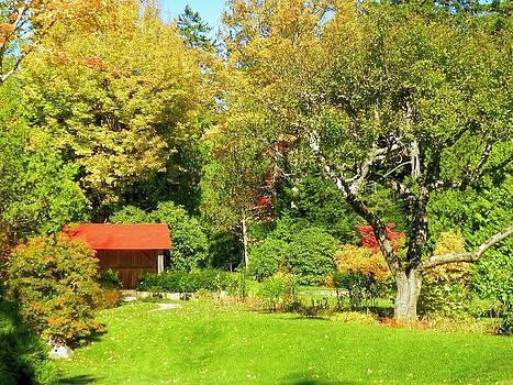 Gene Cyr - Coastal Garden