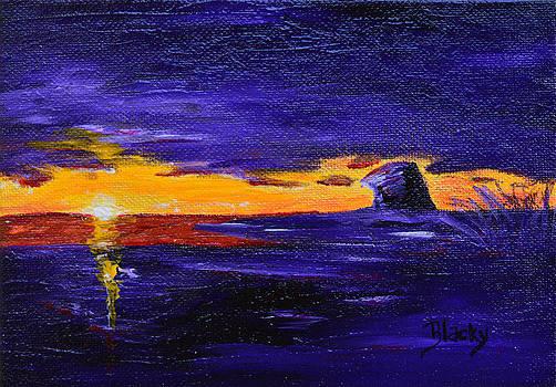 Donna Blackhall - Coastal Sunset