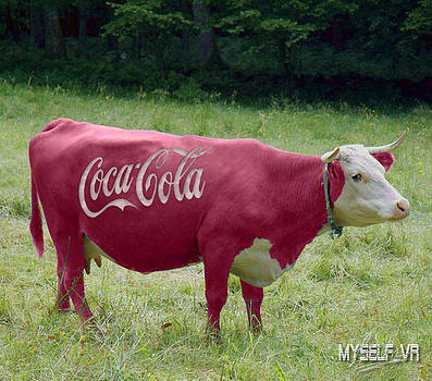 Coca-Cola Cow by Iliyan Stoychev