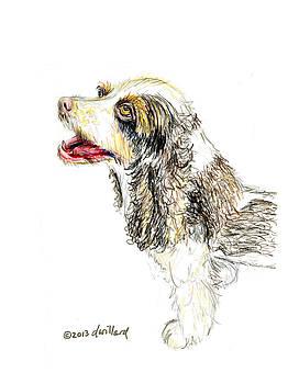 Cocker Spaniel by Deborah Willard
