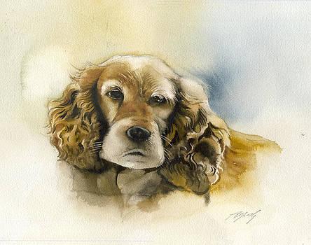Alfred Ng - cocker spaniel watercolor