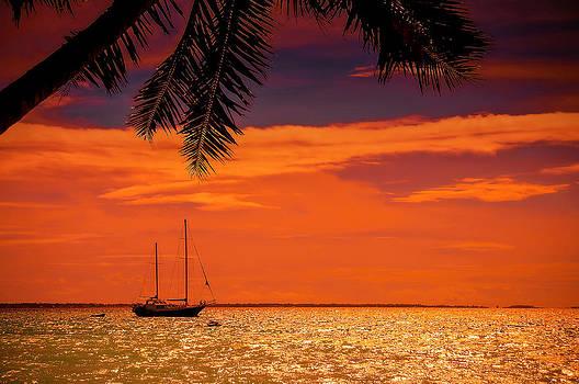 Jenny Rainbow - Cocktail Tropical Dream