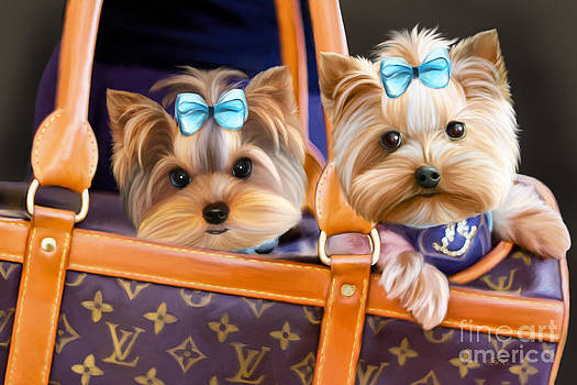 Coco and Lola by Catia Lee