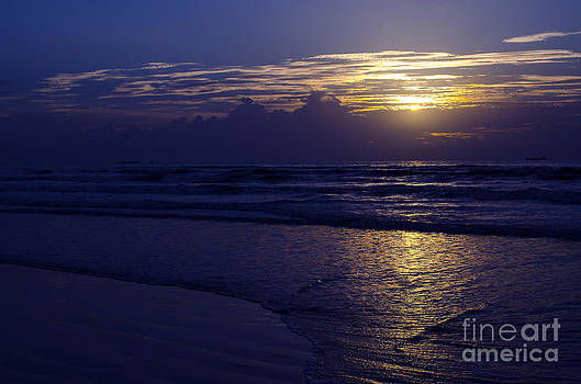 Cocoa Sun by Jerry Hart