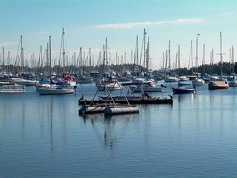 Coconut Grove Harbor by Charlotte Craig