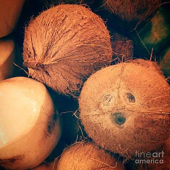 Lauren Williamson - Coconut