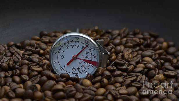 Coffee And Meter  by Bobby Mandal