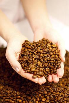 Coffee beans by Iva Krapez