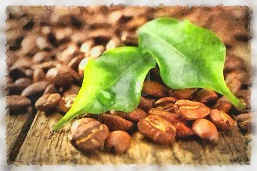 Coffee Beans by Patrick OHare