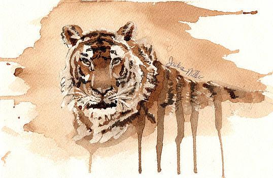 Coffee Tiger by Jackie Miller