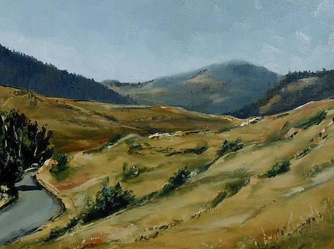 Cokedale Road Livingston Montana by Les Herman