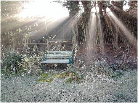 Cold and Frosty morn by Geoff Cooper