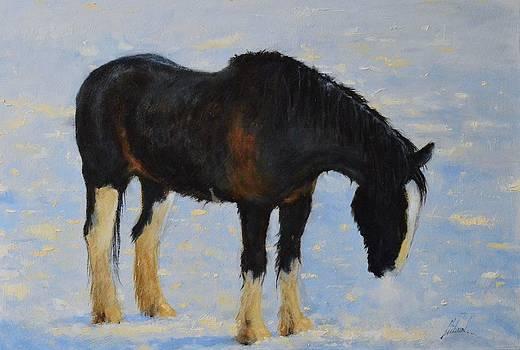 Cold by Greg Clibon