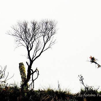 Cold by Katalina Fuentes
