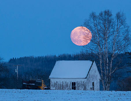 Cold Moon by Jeff Clark