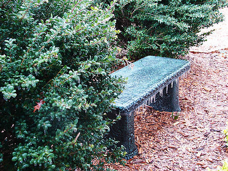 Charleston sc Cold Seat by Ella Char