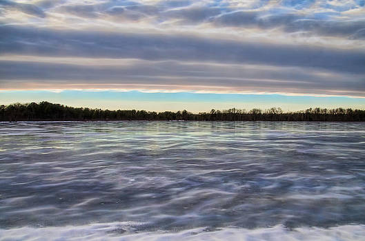 Cold Winter Frozen Bog by Beth Sawickie