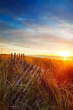 Jo Ann Snover - Collapsing dune fence