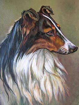 Collie by Tanya Buryak