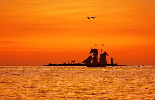 Collingwood Tall Ships by Jeff S PhotoArt