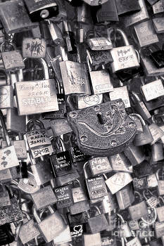 Gregory Dyer - Cologne - Hohenzollern Bridge - Gypsy Locks - Black and White
