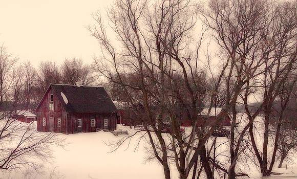 Melinda Martin - Colonial Winter