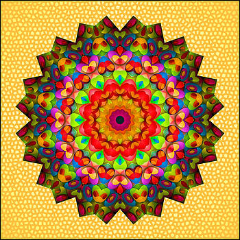 Color Circles Kaleidoscope by Liz Mackney