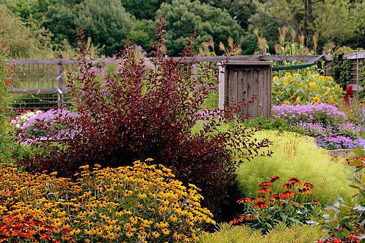 Rosanne Jordan - Color Me Pretty Garden