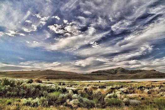 Color Of The Desert by Gene Praag