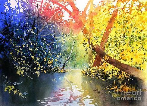 Celine  K Yong - Color of trees