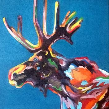 Color Run by Hogan Willis