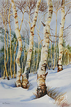 Colorado Aspens by Joye Moon