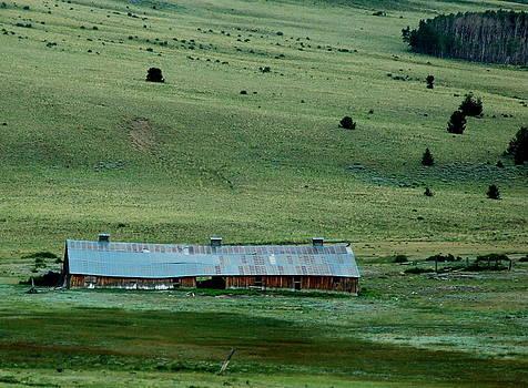 Kathy McCabe - Colorado Barn on High Mountain Meadow