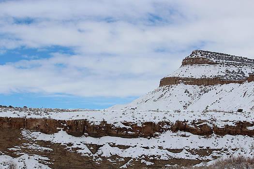 Colorado Blue Sky by Margaret  Slaugh