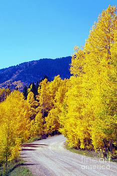 Douglas Taylor - COLORADO COUNTRY ROAD