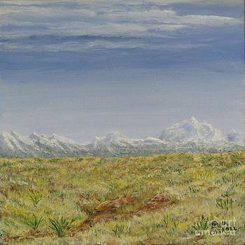 Colorado Eastern Plains by Dana Carroll