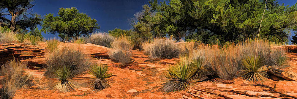 Christopher Arndt - Colorado National Monument Desert Flora Panorama