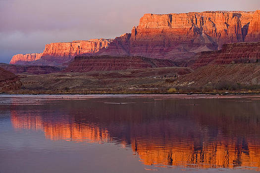 Colorado river and the Vermillion cliffs by Tom Brownold