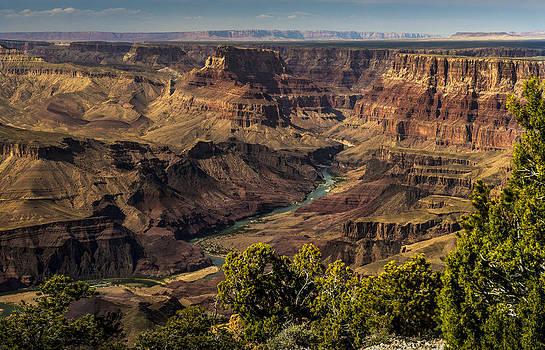 Torrey McNeal - Colorado River