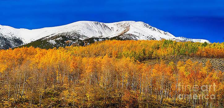 James BO  Insogna - Colorado Rocky Mountain Independence Pass Autumn Pano 2