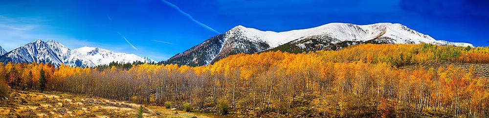James BO  Insogna - Colorado Rocky Mountain Independence Pass Autumn Panorama