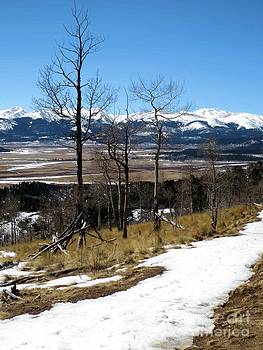 Colorado Trail 1 by Claudette Bujold-Poirier