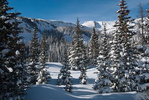 Colorado Winter Landscape by Cascade Colors