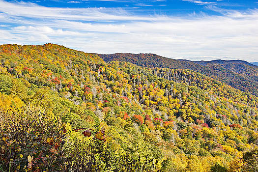 Simply  Photos - Colored in Smoky Mountains
