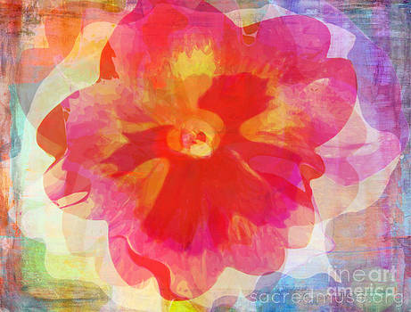 Colorful Abstract Flower by Sacred  Muse
