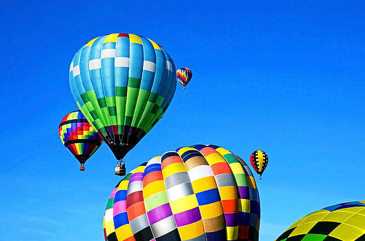 Colorful Balloons by Cheryl Cencich