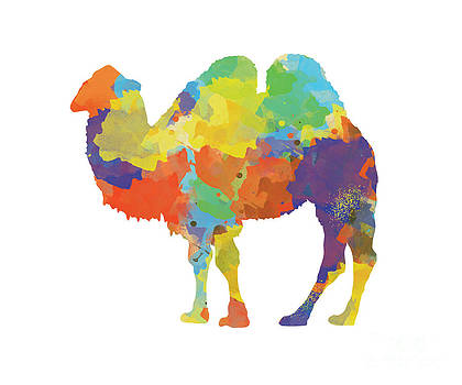 Colorful Camel- Silhouette Print by Trilby Cole
