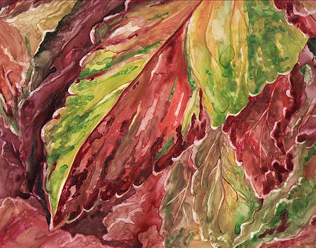 Colorful Coleus by Rosie Brown