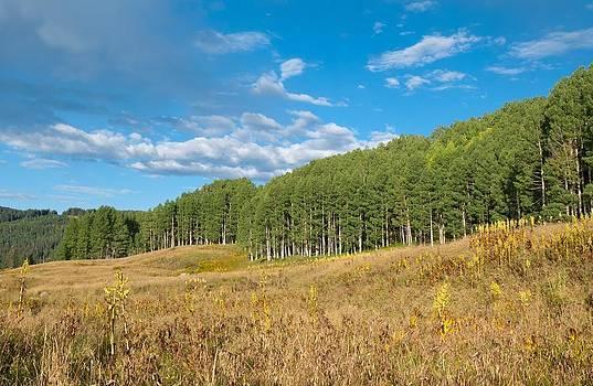 Colorful Colorado Autumn by Cascade Colors
