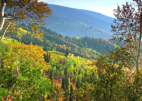 Brian Harig - Colorful Colorado